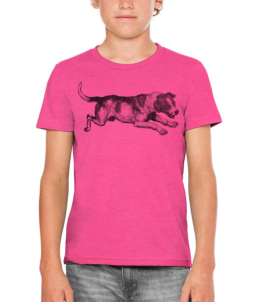 Printed In The Usa Austin Ink Apparel Playing Barking Dog Unisex Kids Vintage Printed T Shirtin Color Aqua Size Medium