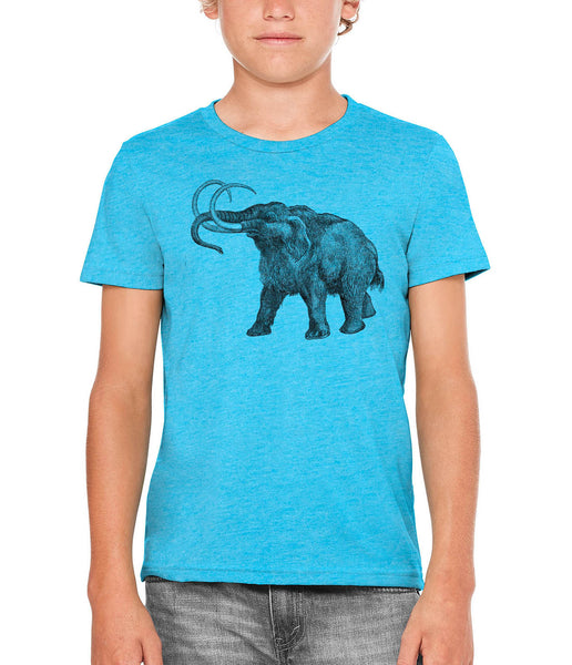 Printed In The Usa Austin Ink Apparel Ancient Wooly Mammoth Unisex Kids Vintage Printed T Shirtin Color Aqua Size Large