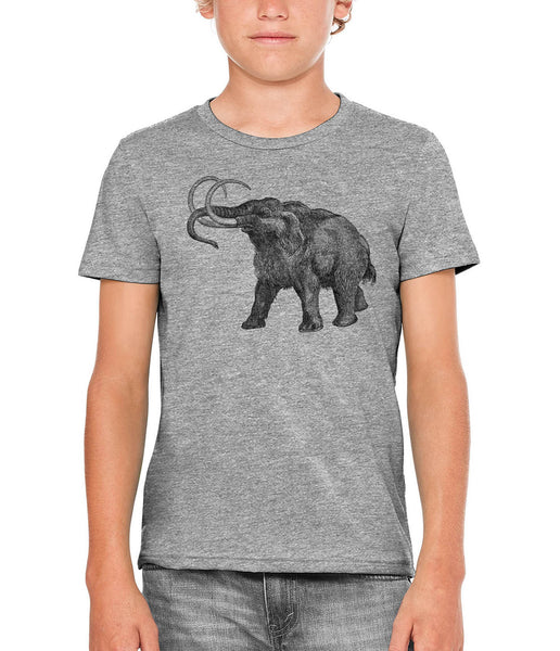Printed In The Usa Austin Ink Apparel Ancient Wooly Mammoth Unisex Kids Vintage Printed T Shirtin Color Heather Grey Size Large