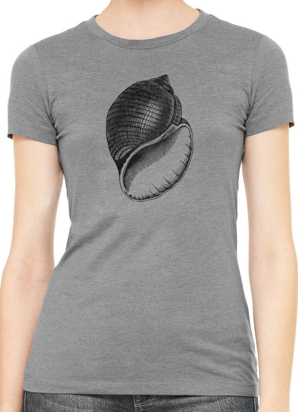 Austin Ink Antique Shell Womens Slim Short Sleeve Cotton T-Shirt