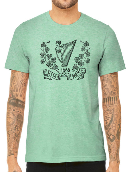 Austin Ink Apparel Allegiance to Ireland Quality Triblend Short Sleeve Mens T-Shirt
