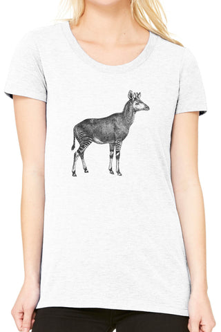 Austin Ink Apparel Striped Okapi Fitted Ladies Soft Triblend Short-Sleeve T-Shirt