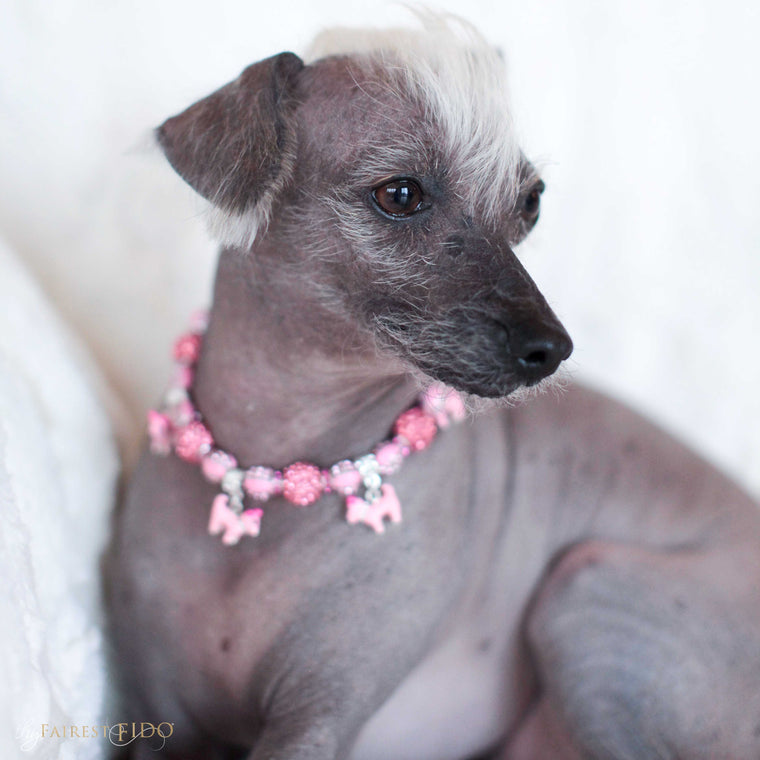 Peruvian-Inca-Orchid-dog-Stella-von-diamondpants-thy-fairest-fido-dog-jewelry-wearing-Perky-pooch-charmed-royalty-pink