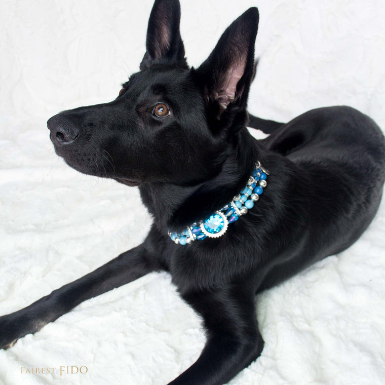 Riley-black-german-shepard-opulent-pearls-blue-width-3-dog-jewelry-thy-fairest-fido