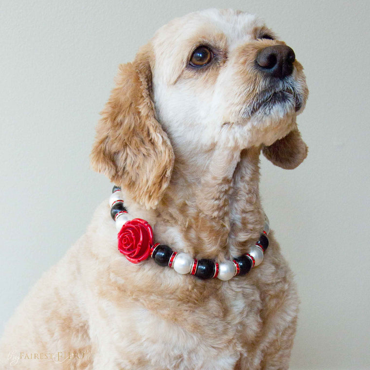Cj-Cockapoo-dog-thy-fairest-fido-wearing-dog-jewelry-classic-beauty-swarovski-pearls-black-and-white-with-red-accents-and-flower-width-3