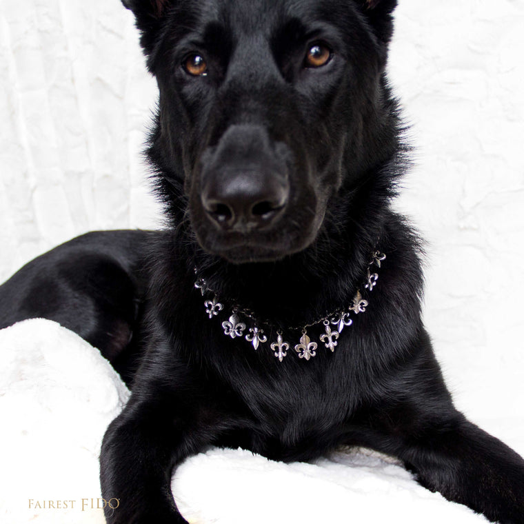 Riley-black-german-shepard-fleur-di-lis-flair-dangle-chain-silver-width-2/3-dog-jewelry-thy-fairest-fido
