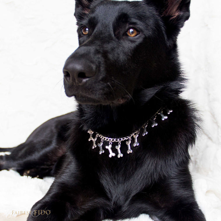 Riley-black-german-shepard-BYOB-Flair-Bone-dangle-chain-silver-width-2/3-dog-jewelry-thy-fairest-fido