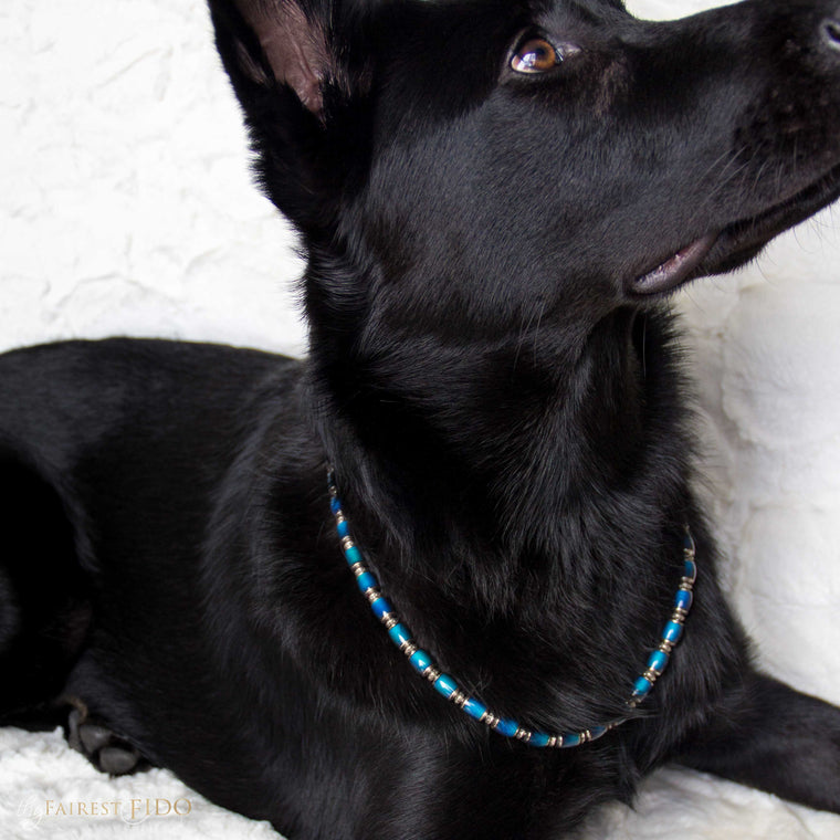 Riley-black-german-shepard-Moody-Pooch-color-changing-width-2/3-dog-jewelry-thy-fairest-fido