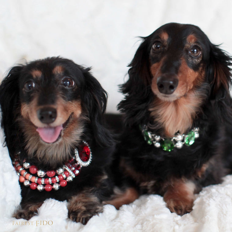 Sonya-and-bruce-dachshunds-black-thy-fairest-fido-dog-jewelry-Ombre-pearls-red-swarovski-pearls-sonya-and-ethernal-gems-green-and-peridot-on-bruce-both-width-2