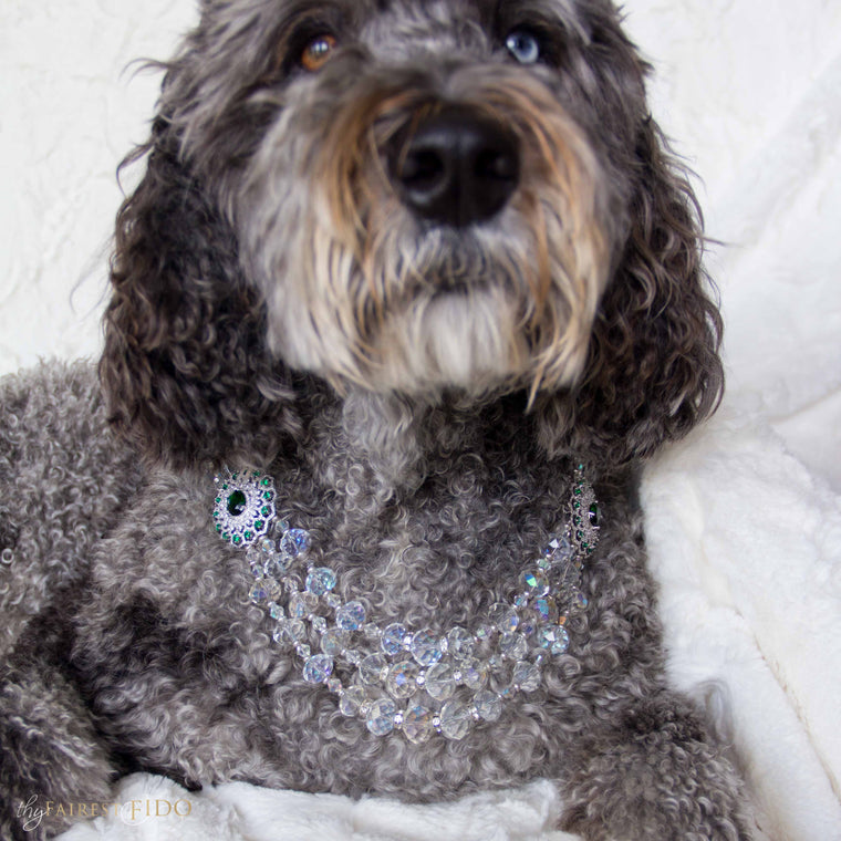 Hurly-labradoodle-dog-thy-fairest-fido-wearing-stately-statements-width-3-green-and-cz-dog-jewelry