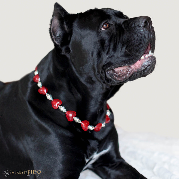 Cane-Corso-Dog-Odaceur-Happy-Hearts-red-dog-jewelry-width-3-thy-fairest-fido