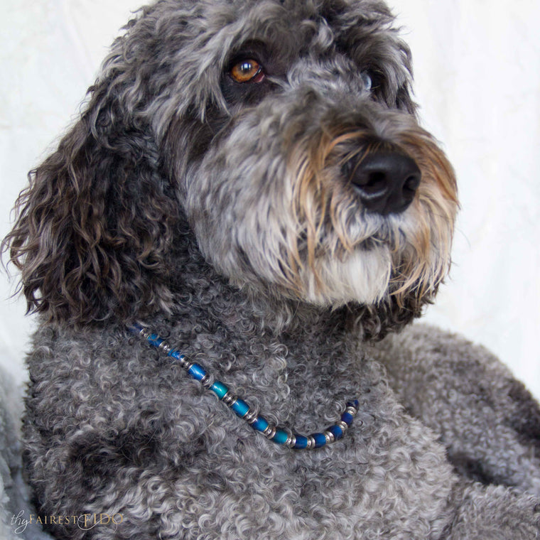 Hurly-labradoodle-dog-thy-fairest-fido-wearing-moody Pooch-color-changing-jewelry