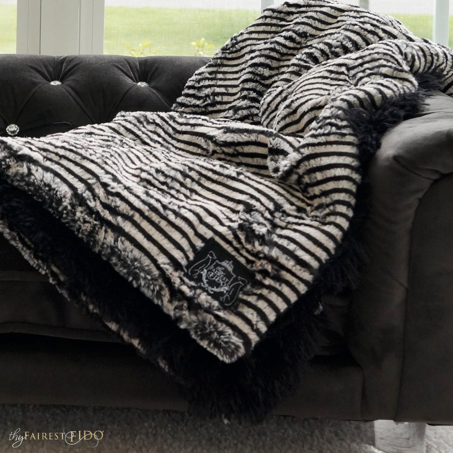 black-and-white-stripes-on-black-shaggy-fur-dog-01