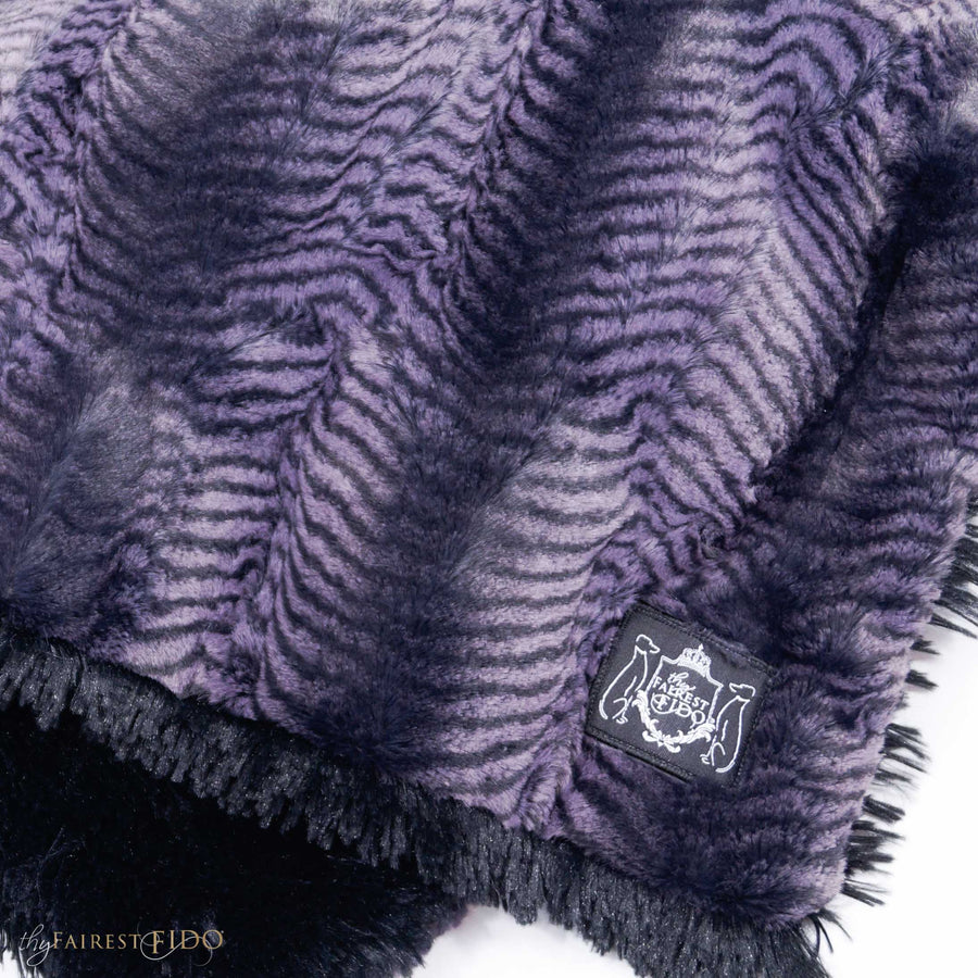 regal-purple-zebra-print-on-black-shaggy-fur-dog-01