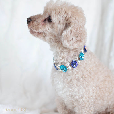 Eternal Gems, faceted jewel tone, shimmering crystals and signature silver beads, blue and teal, width 1, on Ryder a Maltipoo