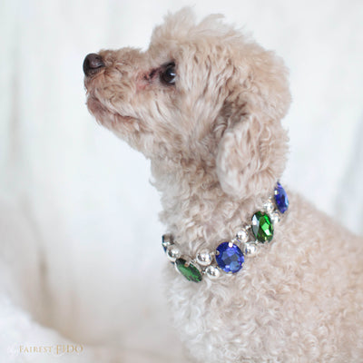 Eternal Gems, faceted jewel tone, shimmering crystals and signature silver beads, emerald and blue, width 1, on Ryder a Maltipoo