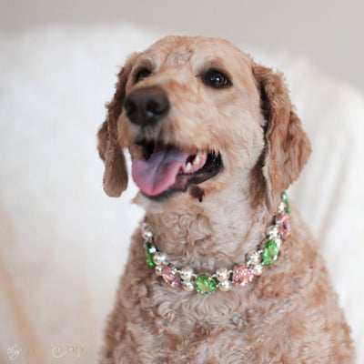 Eternal_Gems_Two_row_woven_pink_peridot_glass_crystals_with_signature_silver_beads_width_3_Thy_Fairest_Fido_on_sammie_a_goldendoodle_dog