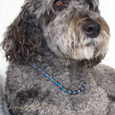 Moody Pooch, Color changing gold, green, aqua and blue beads AAA on Hurley a Labradoodle