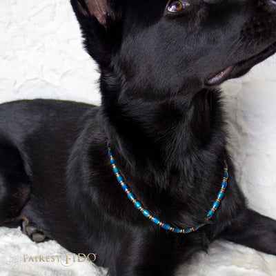 Moody Pooch, Color changing gold, green, aqua and blue beads AAA on Riley a German Shepard