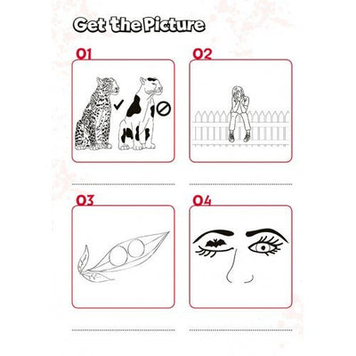Visual Learning Get the Picture Puzzle Book
