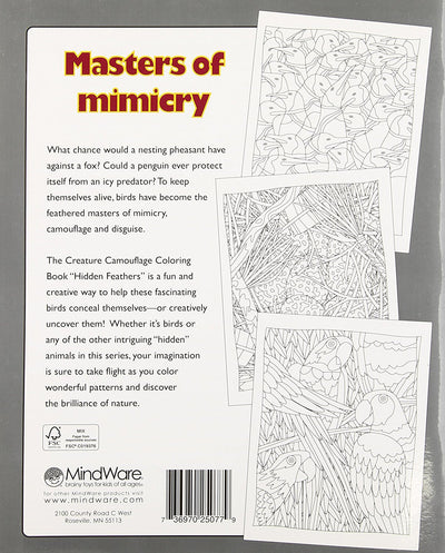 Hidden Feathers Colouring Book
