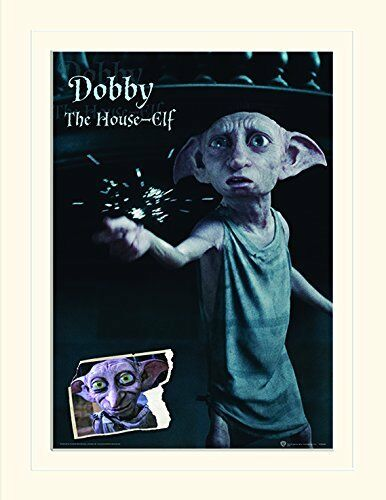 Harry Potter Character Posters - Sirius / Dobby Wall Prints