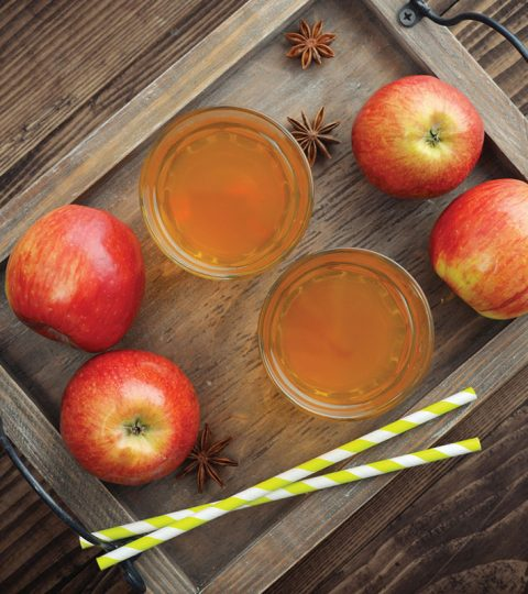 Gourmet Village Spiced Apple Cider