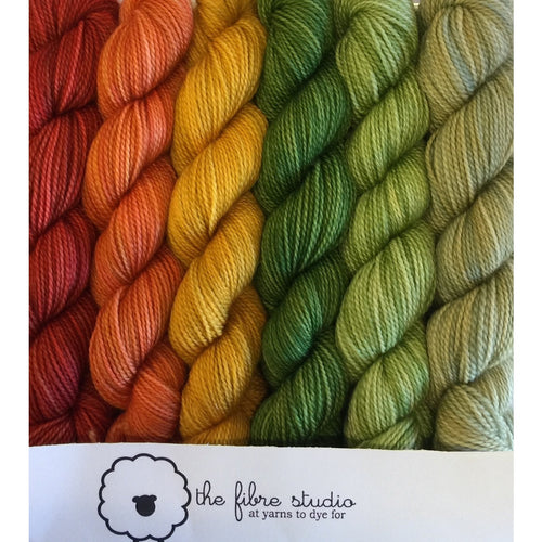 6/1 Fall Is In The Air - Mini Skein Kits