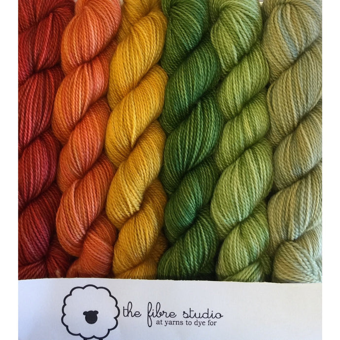 6/1 Cherokee - Mini Skein Kits