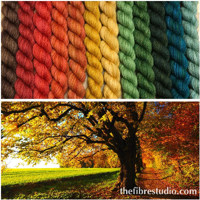 12/1 Fall Is In The Air - Mini Skein Kits