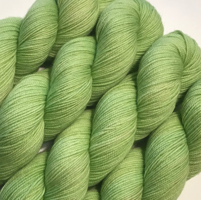 Fiddlehead - Studio Smitten