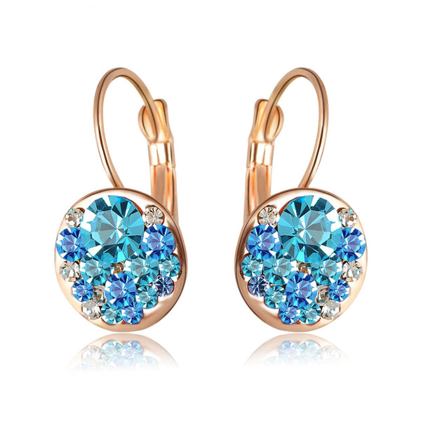 Sparkling Crystal Earrings - SoulForHer