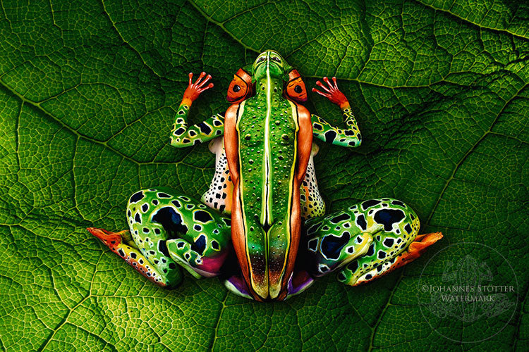 Frog by Johannes Stoetter Prints USA