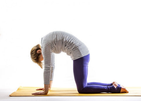 yoga for menopause cow pose