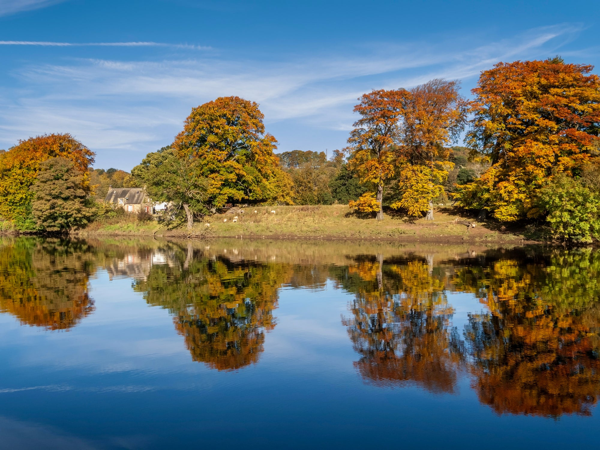 A Beginner's Guide To Shooting Autumn Colours
