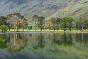 England, Cumbria, Lake District National Park. Early morning reflections at Lake Buttermere, on a still autumn day.