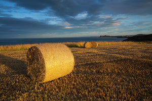 England, North Yorkshire, Scarborough. Storm clouds above a field and hay bales in North Yorkshire.