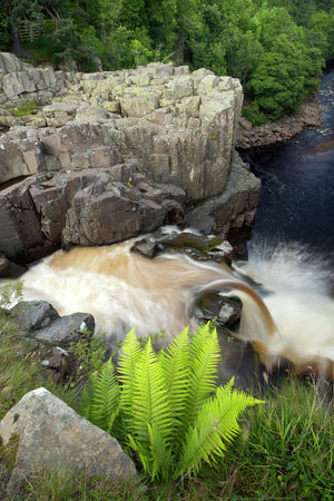 England, County Durham, High Force. The River Tees cascades down the High Force waterfall in County Durham.