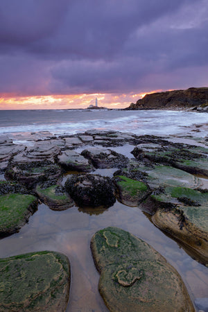 England, Tyne and Wear, Old Hartley Bay looking towards St Mary's Lighthouse.