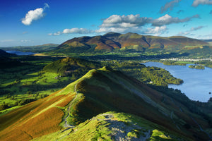 England, Cumbria, Lake District National Park. View from Cats Bells near Derwentwater, looking towards Skiddaw and Bassenthwaite.