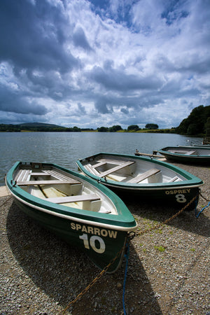 England, Cumbria, Talkin Tarn Country Park. Rowing boats on the shore of the Talkin Tarn near Carlisle.