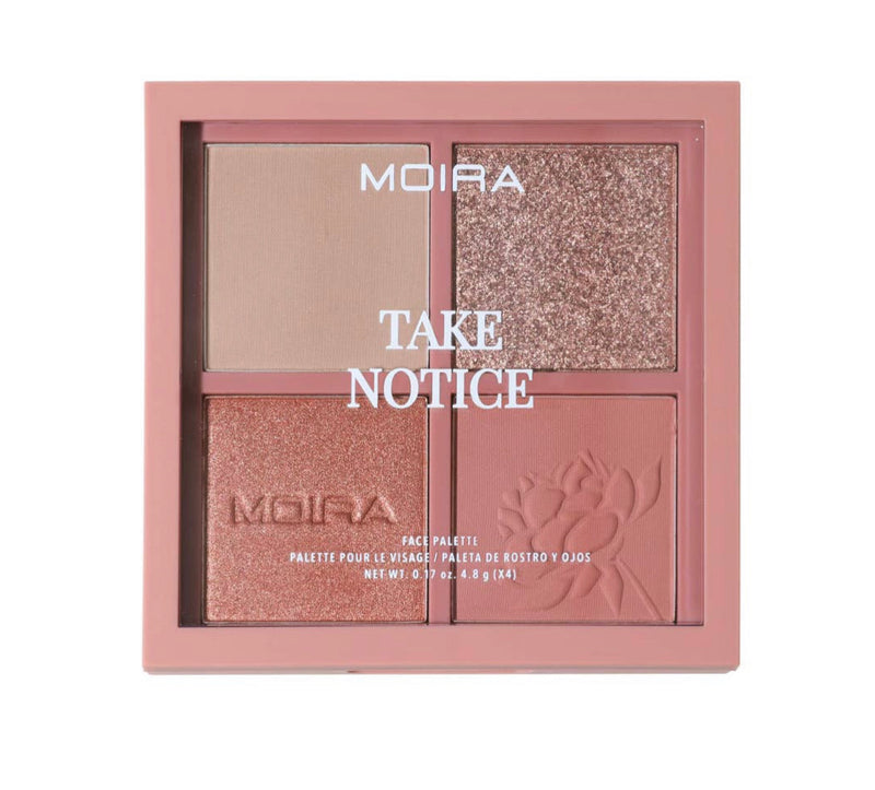 Take notice blush/eye palette