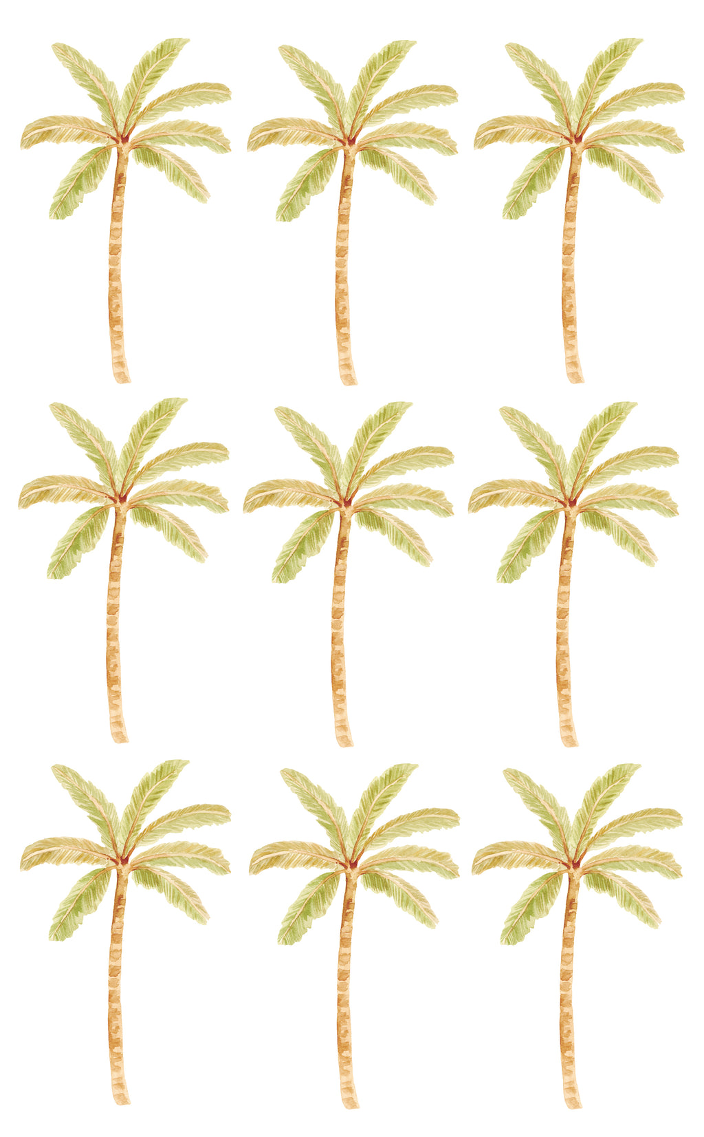 Happy Palms - Sailah Palm Green
