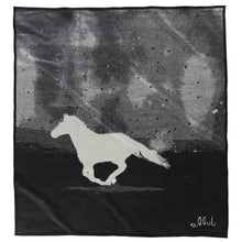 Artist Series Blanket - A Horse Called Paint