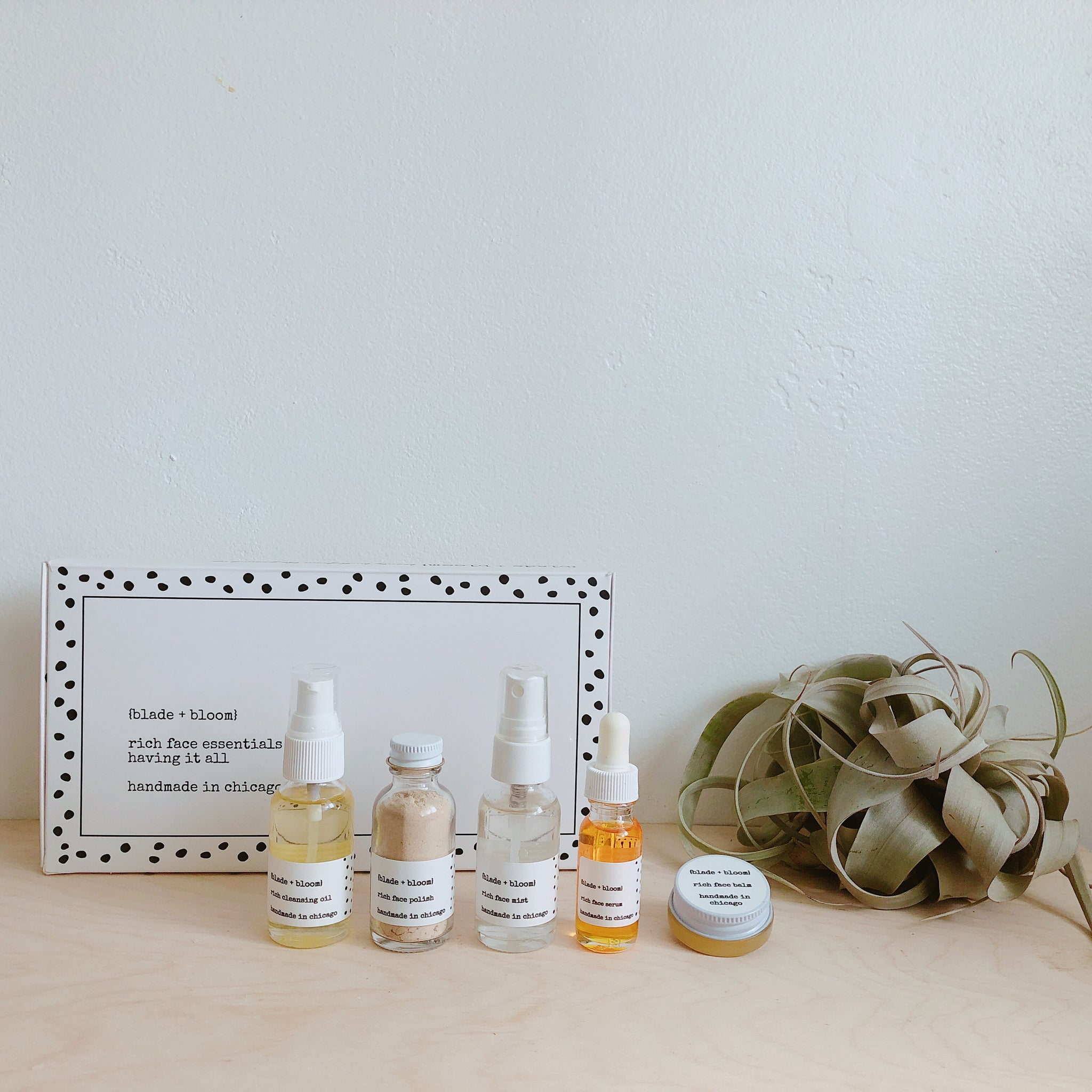 rich face essentials set / having it all