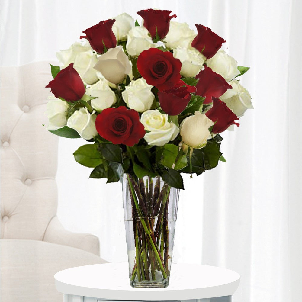 RED & WHITE ROSES MIX TWO DOZEN