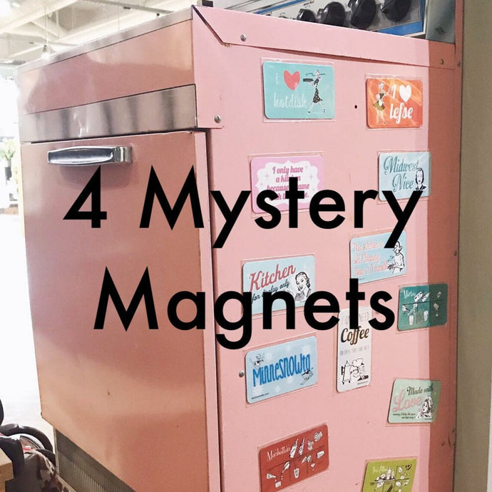 Mystery Pack of 4 Magnets