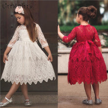 Embroidery Flower Lace Dress