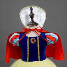 Fancy Princess Cosplay Costumer Dresses