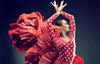 New Rough Guides: Mediterranean & Flamenco